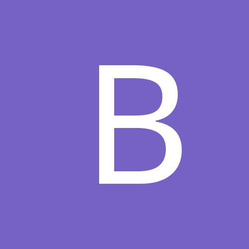 bisonhead33