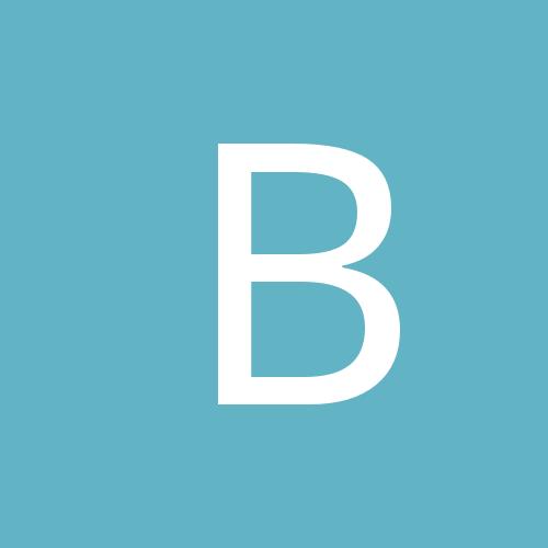 bpbmint